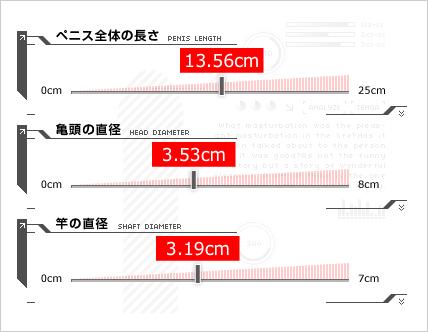 ペニスの長さの測り方