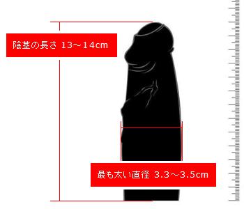 日本人の平均ペニスサイズと形状(2012年度調べ)